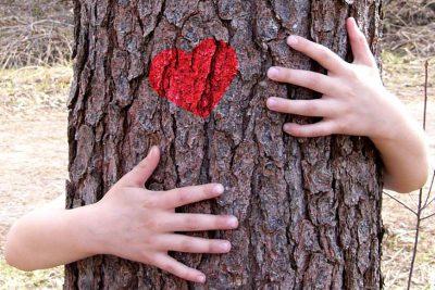 Un día del árbol más ecológico